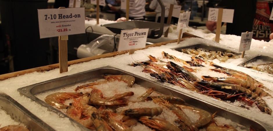 crevettes géantes tropicales vivantes rares - Pont de Brooklyn Manhattan New-York Foodie - le voyage gastronomique