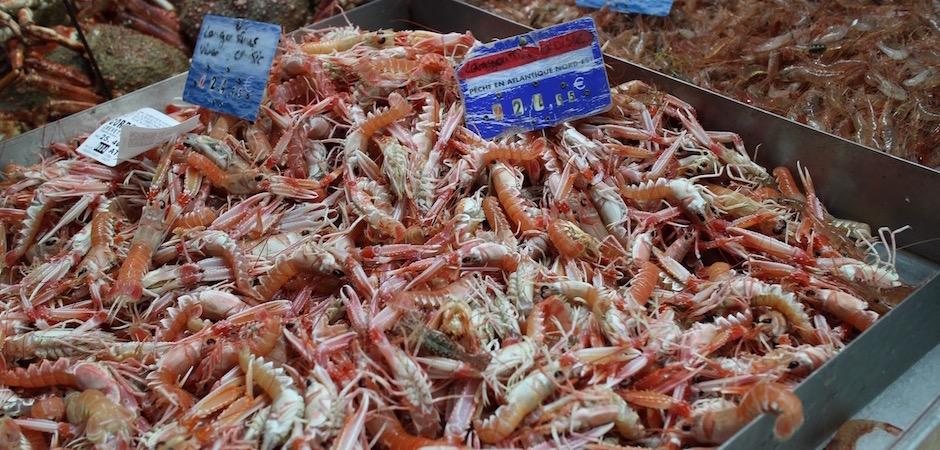 langoustines fraiches vivantes - Le marché de Talensac - la visite foodie à Nantes