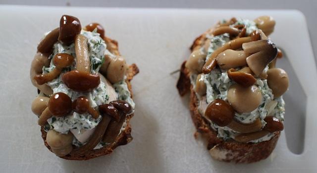 montagne-de-champignons-toast-forestier-frais-et-gourmand