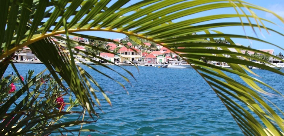 gustavia palmiers - Voyage foodie à Saint Barth